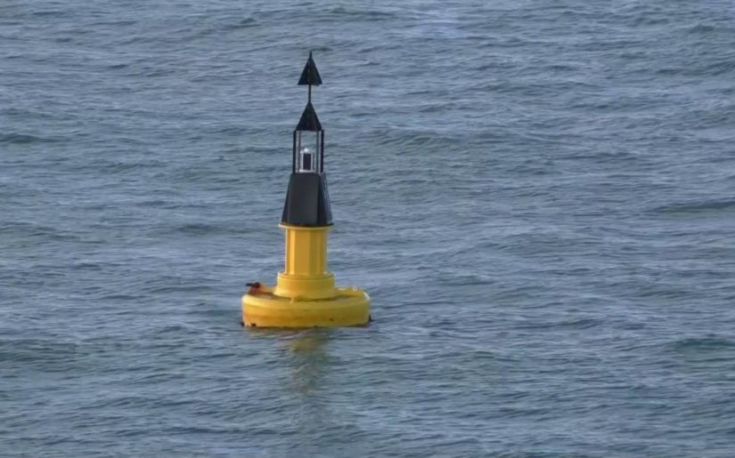 Yellow and black cardinal system buoy floating in the water.